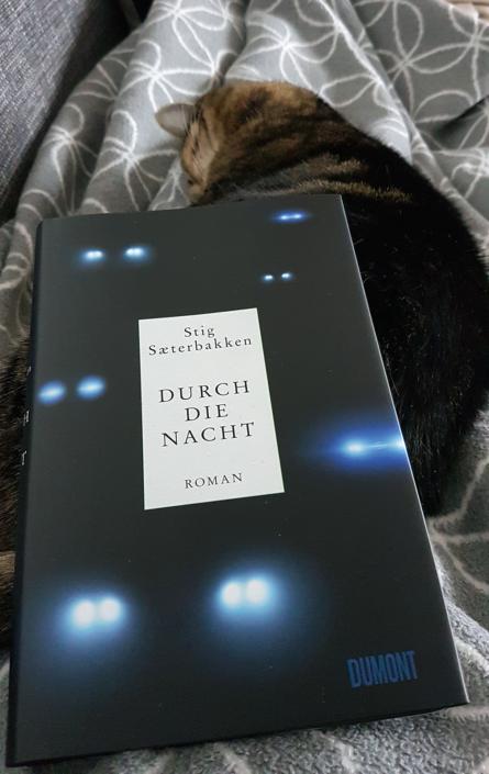 Ein Exemplar von »Durch die Nacht« auf einer Decke drappiert. Weiter hinten: Eine Katze.