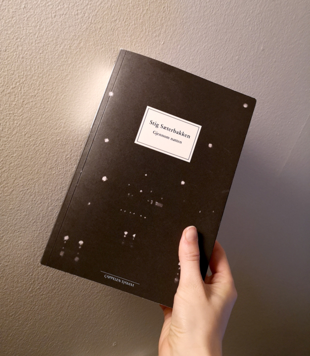 Eine Hand hält die norwegische Ausgabe von Stig Sæterbakkens »Durch die Nacht«
