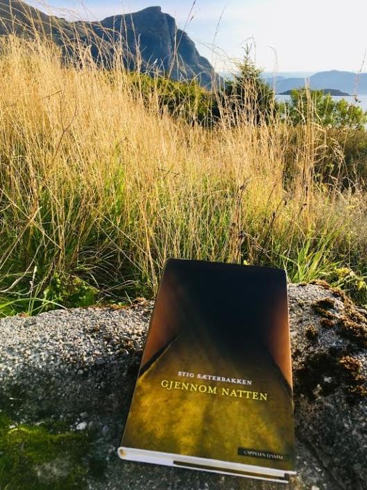 Norwegische Ausgabe von »Durch die Nacht« in der Natur liegend (im Hintergrund: Fjorde)